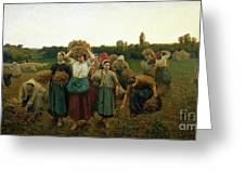 Calling In The Gleaners Greeting Card
