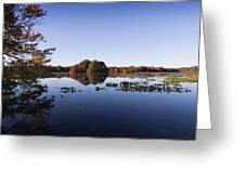 Calm On The Pond Greeting Card