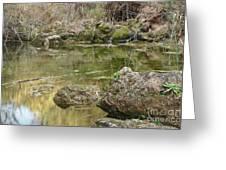 Calm Waters Scenery Greeting Card