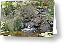 Calming Pond Greeting Card