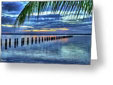 Caloosahatchee Evening Greeting Card