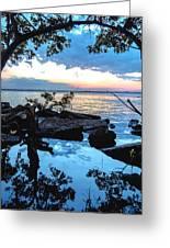 Caloosahatchee Mangroves Greeting Card