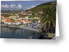 Camara De Lobos Madeira Greeting Card