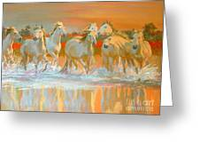 Camargue  Greeting Card
