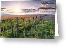 Camas Marsh 3 Greeting Card