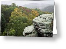 Camel Rock Close Up Greeting Card
