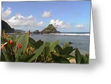 Camelback Island Greeting Card