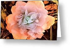 Camellia Bloom Greeting Card