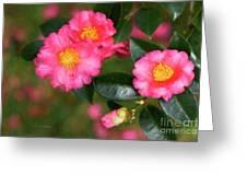 Camellia Pink Greeting Card