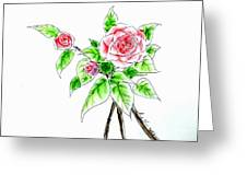 Camellia Pp Greeting Card