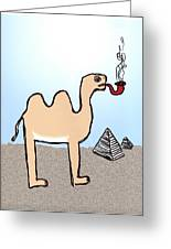 Camels Don't Smoke Pipes Greeting Card