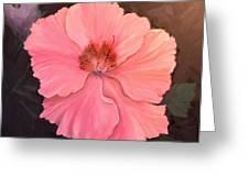 Camilia Greeting Card