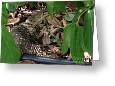 Camouflage Artist  Greeting Card