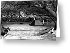 Camp Under Live Oaks Greeting Card