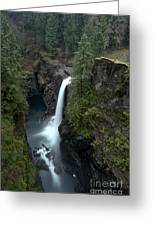Campbell River Rain Forest Falls Greeting Card