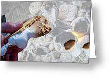 Campfire S'mores Greeting Card