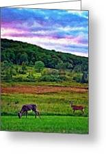 Canaan Valley Evening Impasto Greeting Card
