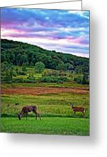 Canaan Valley Evening Greeting Card