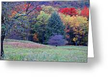 Canaan Valley In Vivid Greeting Card