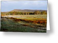 Canaan Valley State Park Greeting Card