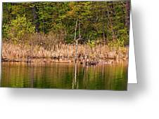 Canada Goose Couple Greeting Card
