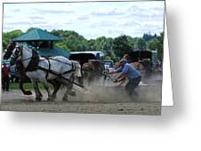Canadain Horse Pull Greeting Card