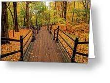 Canadian Autumnal Walkway Greeting Card
