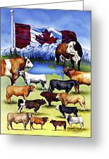 Canadian Beef Breeds Greeting Card