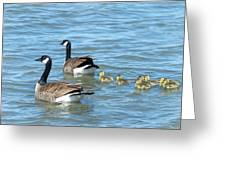 Canadian Geese Family Vacation Greeting Card