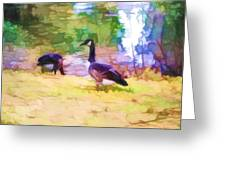Canadian Geese In The Park 3 Greeting Card