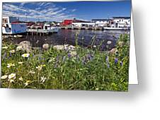 Canadian Harbor On A Sunny Day Greeting Card