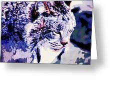 Canadian Lynx 1 Greeting Card