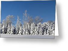 Canadian Winter Panorama Foster Quebec Greeting Card