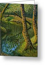 Canal In Sunlight Greeting Card