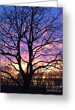 Canal  Winter Sunset  Pt Greeting Card