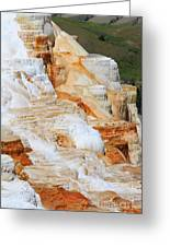 Canary Spring Mammoth Hot Springs Upper Terraces Greeting Card