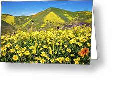Candle Light In The Temblors - Superbloom 2017  Greeting Card