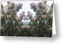 Candy Floss Greek Bush Greeting Card