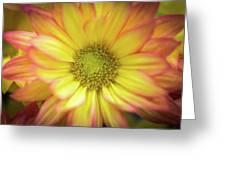 Candy-like Greeting Card