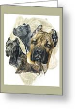 Cane Corso W/ghost Greeting Card