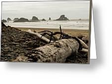 Cannon Beach 2 Greeting Card