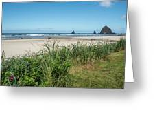 Cannon Beach And Purple Bloom Greeting Card