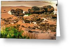 Cannon Beach, Oregon 3 Greeting Card by Shiela Kowing