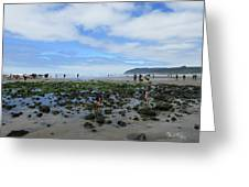 Cannon Beach Tide Pools Greeting Card