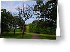 Cannon Valley Trail Greeting Card