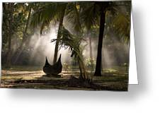 Canoe Under Palm Trees In Kerala, India Greeting Card