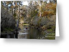 Canoeing In Florida Greeting Card