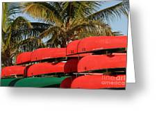 Canoe's At Flamingo Greeting Card