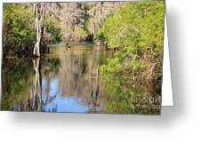 Canoing On Hillsborough River Greeting Card