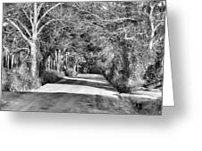 Canopy Clay Road Greeting Card